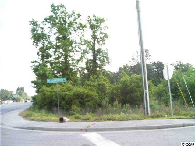 Parcel contains approximately 2.5 acres and is bordered on the east by Meadowbrook Drive and the South by Hwy 544.  It has approximately 220' of frontage on Hwy 544.  The lot is about 500' deep.  There is a power line easement that runs across the rear portion of the property.  Grand Strand Water and Sewer has a forced sewer main that runs through the easement so sewer access is readily available.  All portions of this lot are high and dry land.  Acreage is approximate and not guaranteed.  Buyer is responsible for verification.