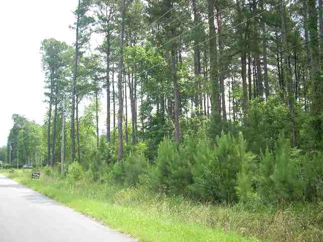 Owner financing! Great 1 acre lot near Enterprise Boat Landing.  Build your dream home here!  Directions: From North: Hwy 17 Bypass, RIGHT on Hwy 707, RIGHT on Enterprise Rd ( by Hess/Wilco Gas Station).  Pass Osprey Marina, Pass Waccatee Zoo.  LEFT on Lamplighter.  Lots located on LEFT of Shady Branch Rd.   From South: Hwy 707 to Bay Rad.  LEFT on Bay Rd towards Island Green.  RIGHT on Shady Branch.  Shady Branch is located across the street from Cypress River Plantation.  Seller is licensed SC real estate agent.
