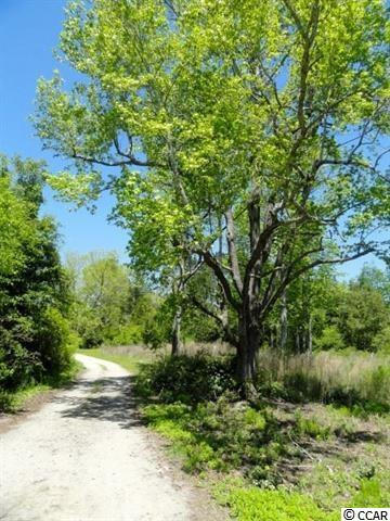 Over an acre of land with beautiful mature trees in an excellent location. The Forestbrook community is close to the beach, shopping, restaurants and boast some of the best schools in the area. Come build your Dream home.