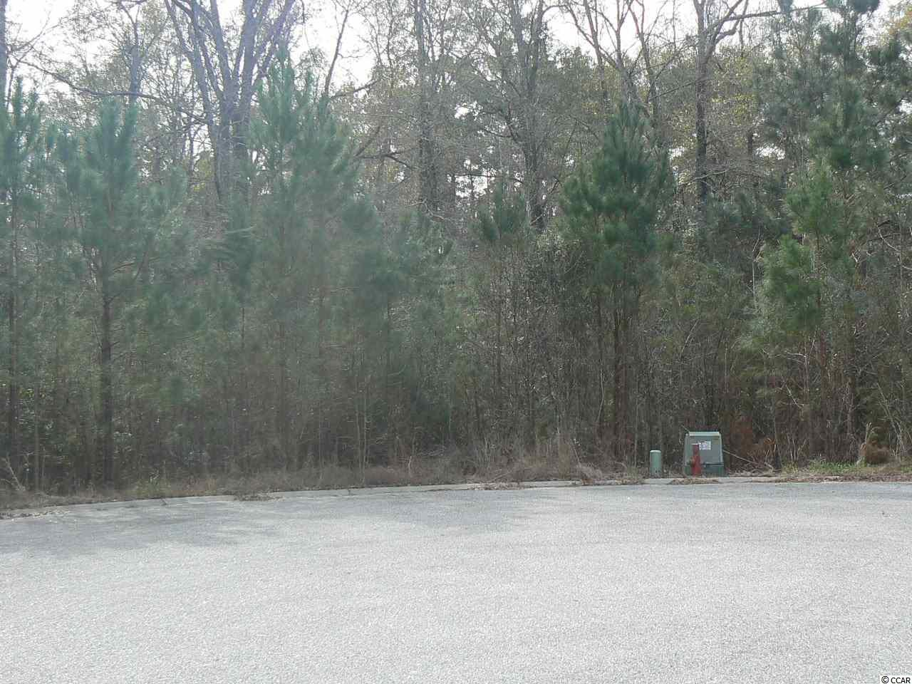 If you are tired of sharing walls with your neighbors or strict HOAs? Then this is the lot for you! This massive lot is over 1.5 acres and ready for your dream home. Walk to the rear of your spacious lot and enjoy peaceful Socastee Creek or drive just a couple of minutes to dining, shopping, airport, and Highways 31,544, and 501. Buy now, build later, bring your own builder or the seller can build your dream home.