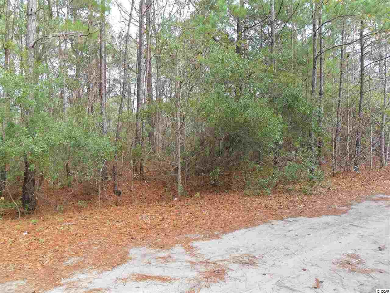 THIS IS LOT #3, WHICH IS ONE OF THREE LOTS IN A LARGER PARCEL, THAT ARE ALL FOR SALE.*See Documents for a portion of the Plat* THE LOT IS NON-BUILDABLE UNTIL CONDITIONS OF THE GEORGETOWN COUNTY WATER AND SEWER DISTRICT EXTENSION POLICY ARE MET. TAP-IN-FEES MUST BE PAID BY PURCHASER. Square footage/acreage is approximate and not guaranteed. Buyer is responsible for verification.