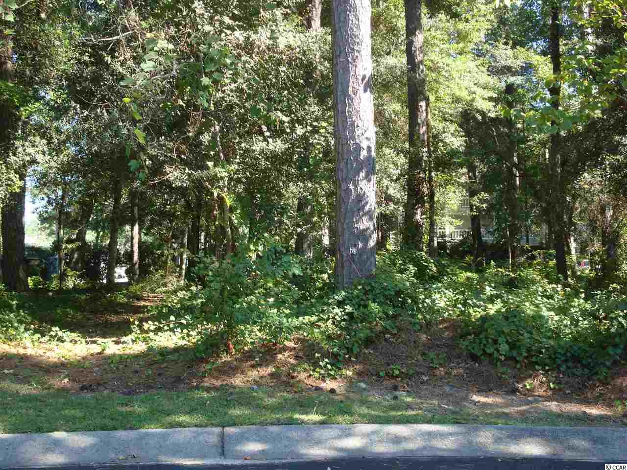 Owner is a SC Licensed agent. lots has 10,346 sq. great for a back yard for children and for pets.  also this lot will not have to be built up it can be on one level is need to be build you dream home and come be a part of the tidewater family  where there are social activities and a club house restaurant, pools tennis court fitness center and a ocean front beach house for owners to enjoy