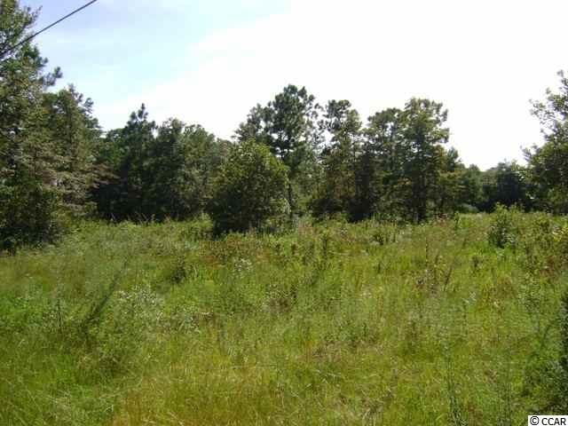 4 acre residential lot on Beaumont Drive. Cleared property, easy access to Highway 17 and River Road. Convenient to shopping, restaurants, and golf courses. Interesting possibilities for this large homesite. House with barn/stable allowed. Can be subdivided.