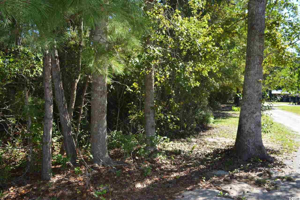 PRICE REDUCED !!!!  This is a 3 acre parcel of land that provides privacy, but is close to everything that Murrells Inlet has to offer.  Lovely homes in the area.