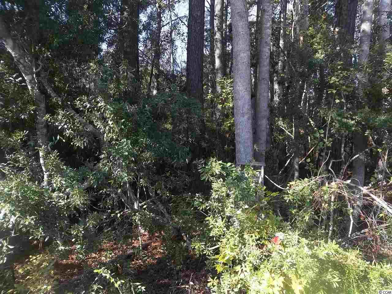This a .97 acres lot that is not in the HOA of Hendrick Lakewood Heights.  It does have an easement of 50 ft. going down the side of the property to get to the back property for logging the rear property.