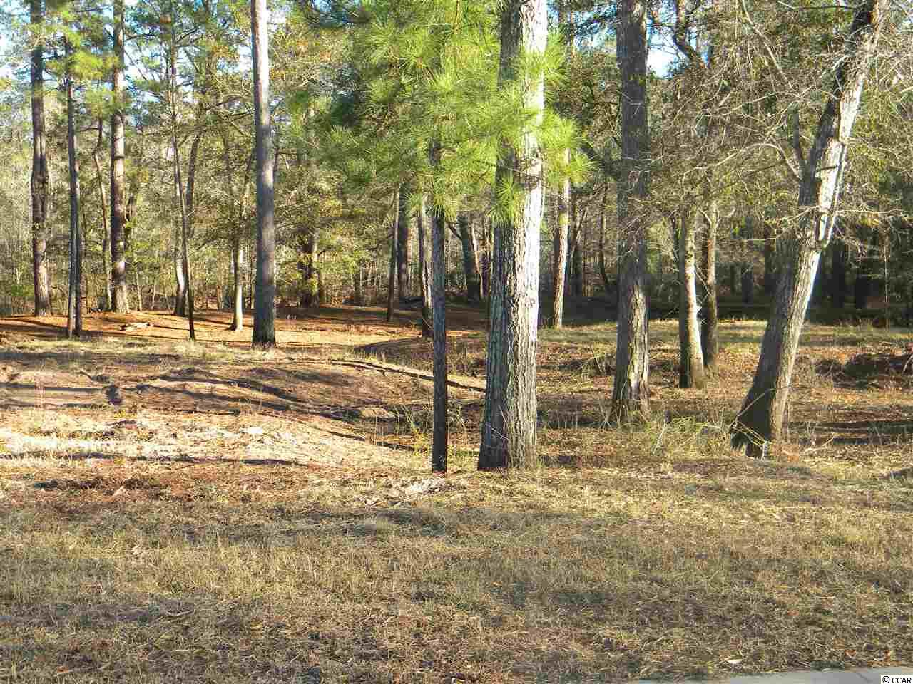 Beautiful river-front lot located in upscale Black Water Cove. Close to Conway and Highway 22 for access to the beach. Shaftsbury Glen golf course is a short walk. Build your dream home on the river with the builder of your choice. Riverside park with pavilion and community boat dock. This lot can be purchased with Lot 12, MLS #1823255, next to it making a total of .59 acres with 145' of riverfront.