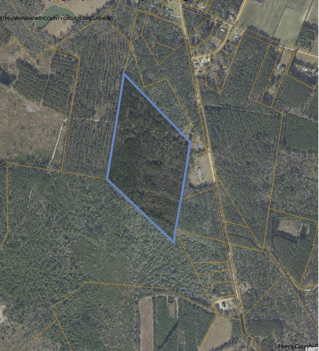39.25 acres of natural paradise. Only 30 minutes from the beach, 15 minutes to Conway. No HOA just an amazing, private retreat. Zoned FA. All listing information is deemed reliable, but it is the buyer's responsibility to verify.