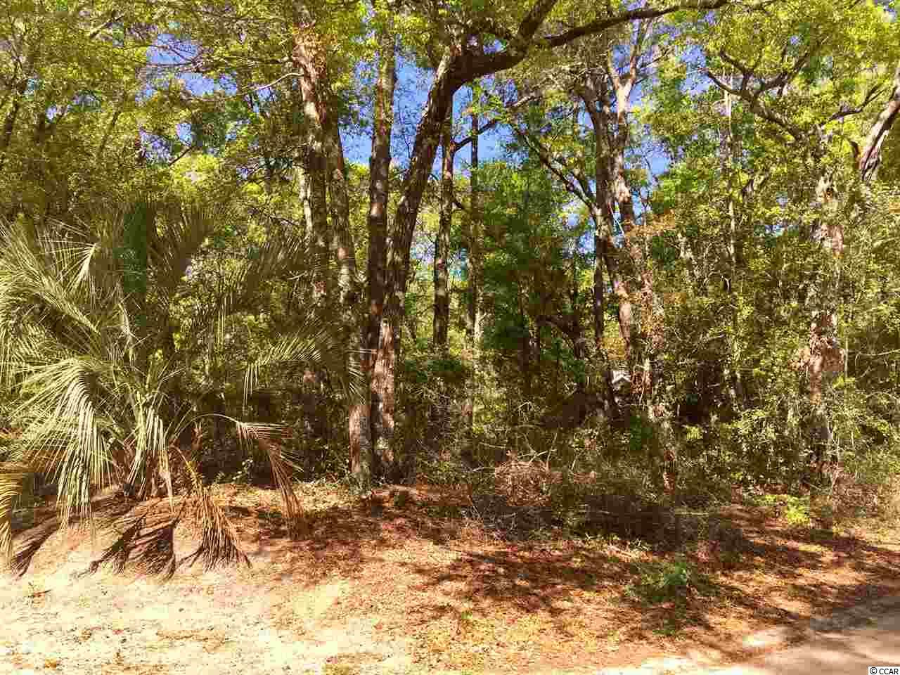 Build your dream home on this beautiful lot.  Almost 1/2 acre, and located just minutes from the Hagley Boat landing on the Intracoastal waterway as well as gorgeous Pawleys Island Beaches.  The HOA in Hagley is voluntary.  Bring your boat or RV.