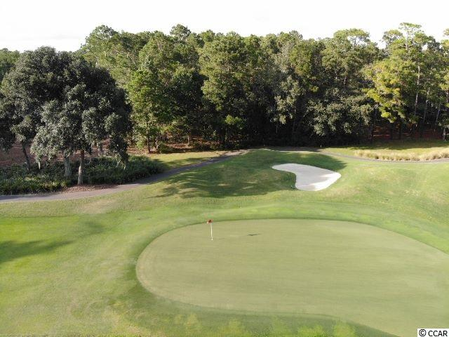 HUGE PRICE REDUCTION!! WOODED HOMESITE OVERLOOKING THE 4TH GREEN OF THE FAMED PETE DYE COURSE. THIS IS A GRAND OPPORTUNITY TO BUILD YOUR DREAM HOME IN THE DESIRABLE DEBORDIEU COLONY. VERY PRIVATE AND SECLUDED NEIGHBORHOOD IS WAITING FOR YOU.