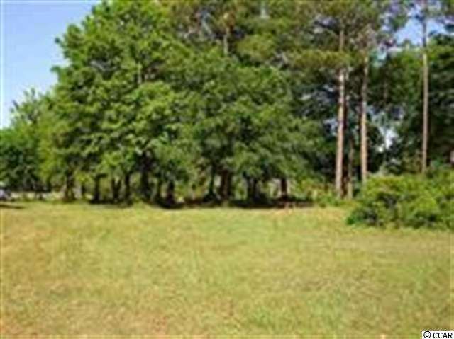 """Prime property @ the """"Crossroads of the Waccamaw Neck"""". Will Build To Suite."""