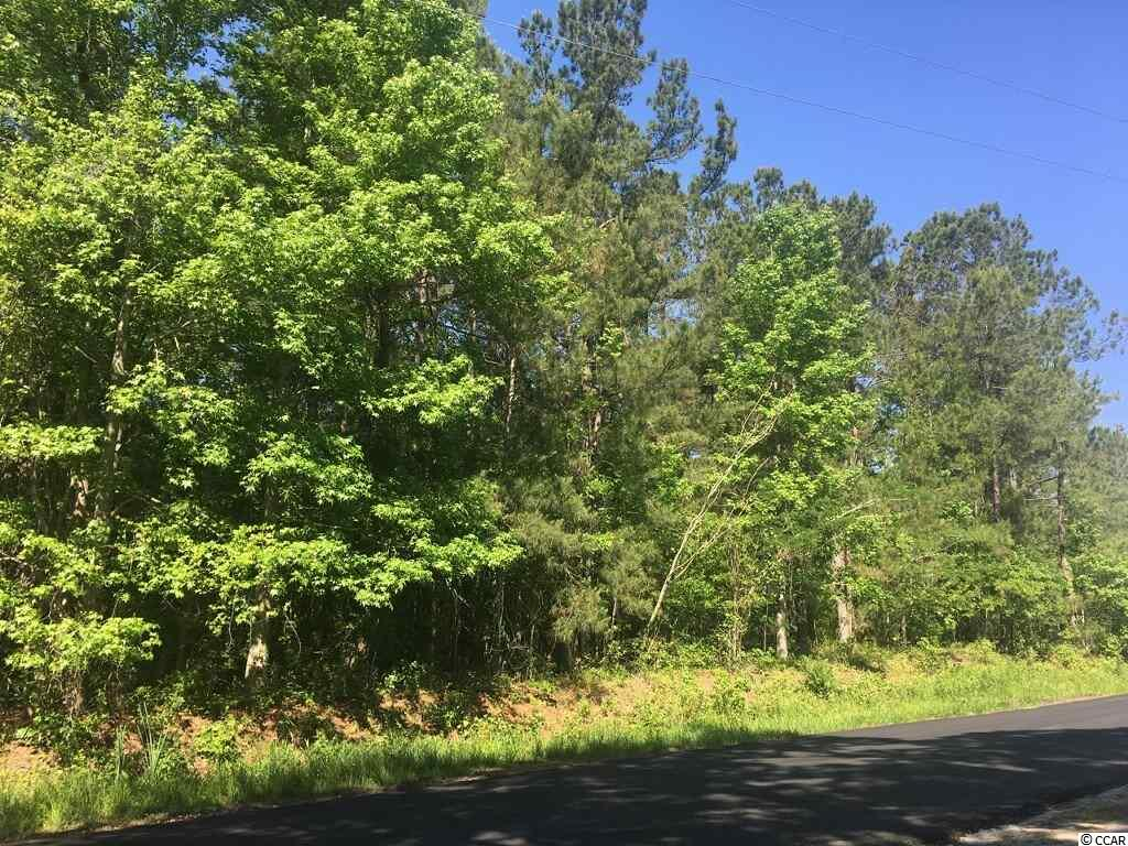 15.74 Acres of wooded land. Loris school district. Approximately 30 mins from all the beach has to offer.  Owner will consider subdividing property to meet Buyer's needs.