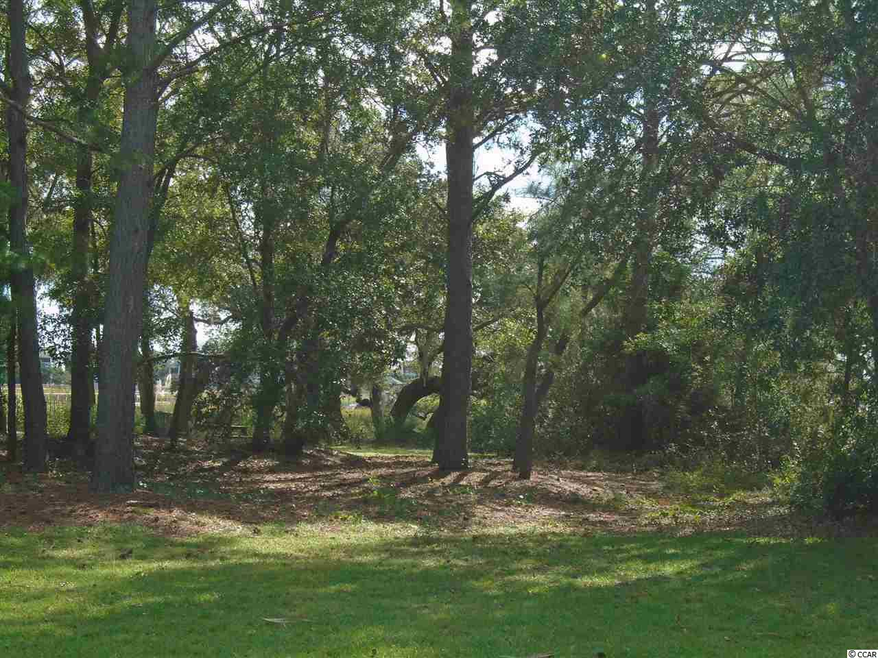 This homesite is one of the last of it's kind available.  Beautiful trees and easy access to Litchfield and Pawleys Creek.  Wonderful marsh views.  Floating dock offers fishing, crabbing, boating and kayaking.  Definitely a piece of paradise.  This hidden community is available to only 10 lucky owners.