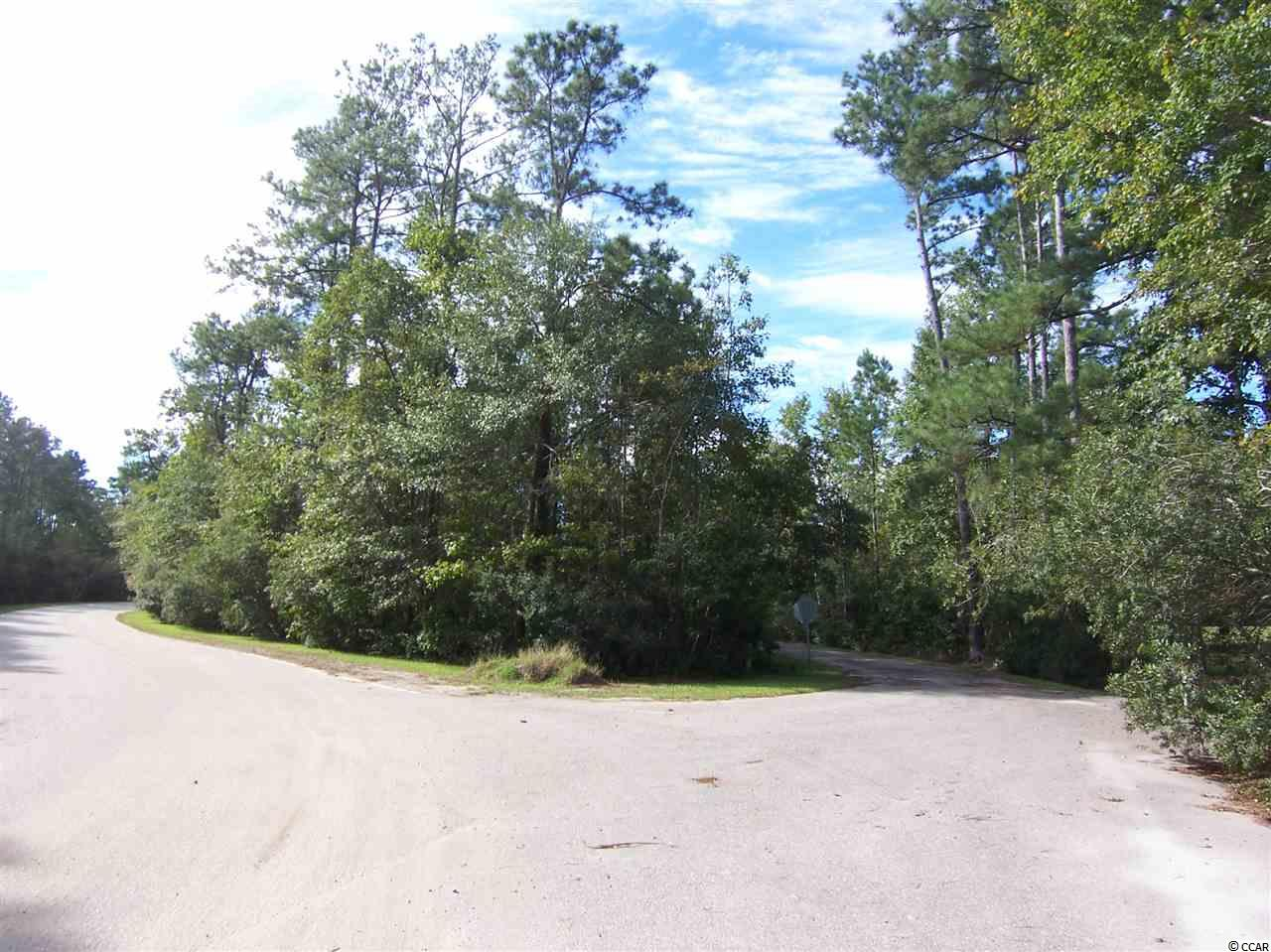Land for sale in Myrtle Beach/Socastee area. Convenient to Rt 544 and Rt 31. Parcel of 2 lots totaling 1.35 acre, zoned residential. Short drive, about 8 miles to beaches. Make an offer!   NOTE: A variance for the setback on the lot is required prior to building. Ask your realtor about the details.