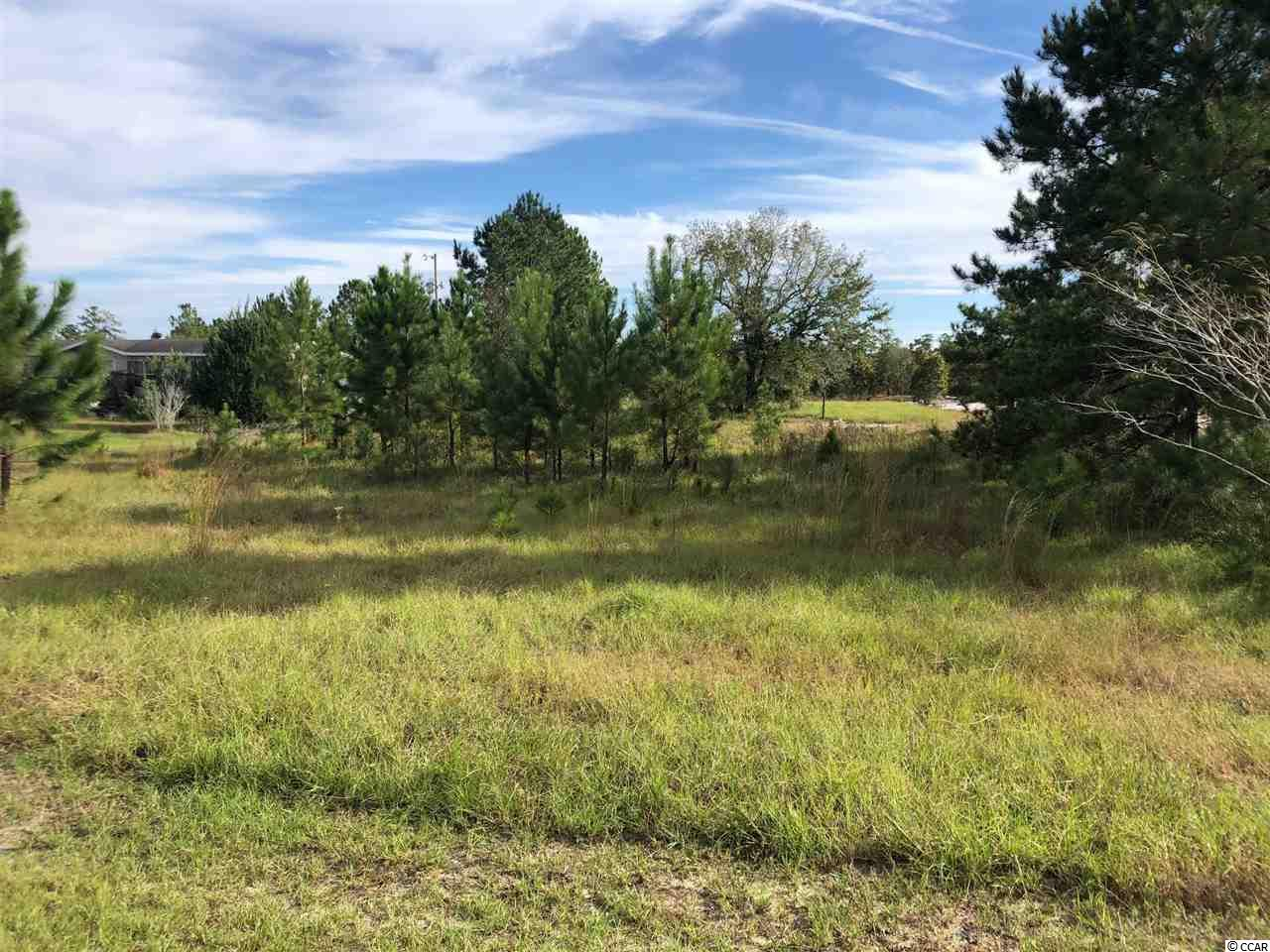 Lot 5 in Black River Estates.  This 1/2 acre lot is ready to go with water available and 105 feet fronting Frances Marion Drive.  Buyers agent is responsible for measurements.