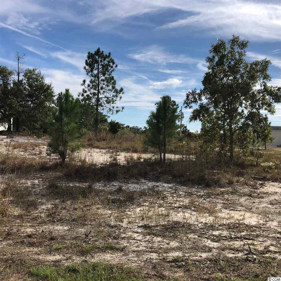 Lot 4 in Black River Estates.  This 1/2 acre lot is ready to go with water available and 105 feet fronting Frances Marion Drive.  Buyers agent is responsible for measurements.