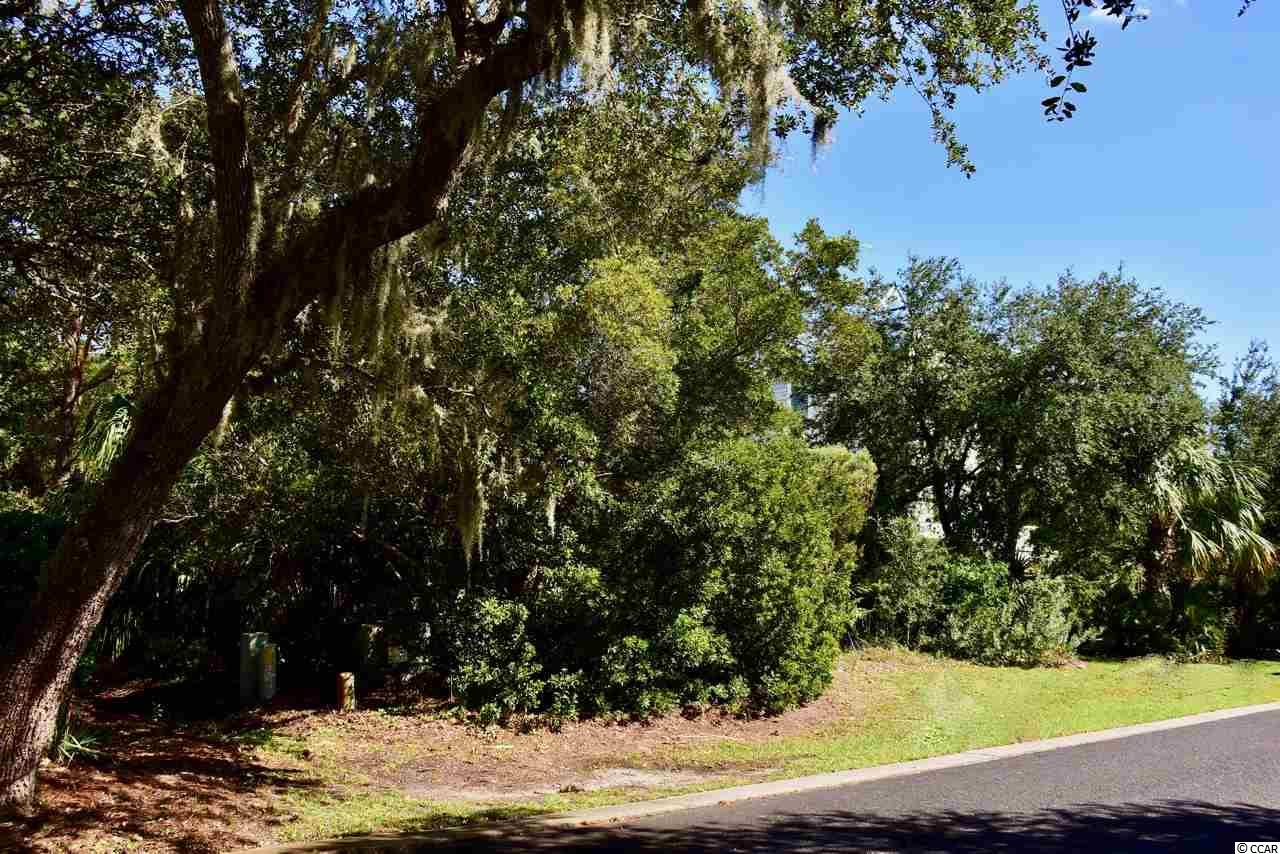 Dare to build your dream home on this pristine lot in the Ocean Oaks section of Debordieu Colony. The countless amenities of DeBordieu Colony, a private 2700 acre community, are only minutes away...miles of secluded beach, bike paths and walking trails, salt water creeks, two pools with Gazebo Bar, Tennis and Fitness center as well as fine or casual dining at the Clubhouse and/or Beach Club and Championship Golf on a course designed by Pete and P. B. Dye.  Community boat landing grants access to North Inlet and the Atlantic Ocean.  Drive time from the security gate to the 6000' runway at Georgetown County Airport is approximately 20 minutes.  Historic Charleston and Myrtle Beach are about an hour's drive south and north respectively.