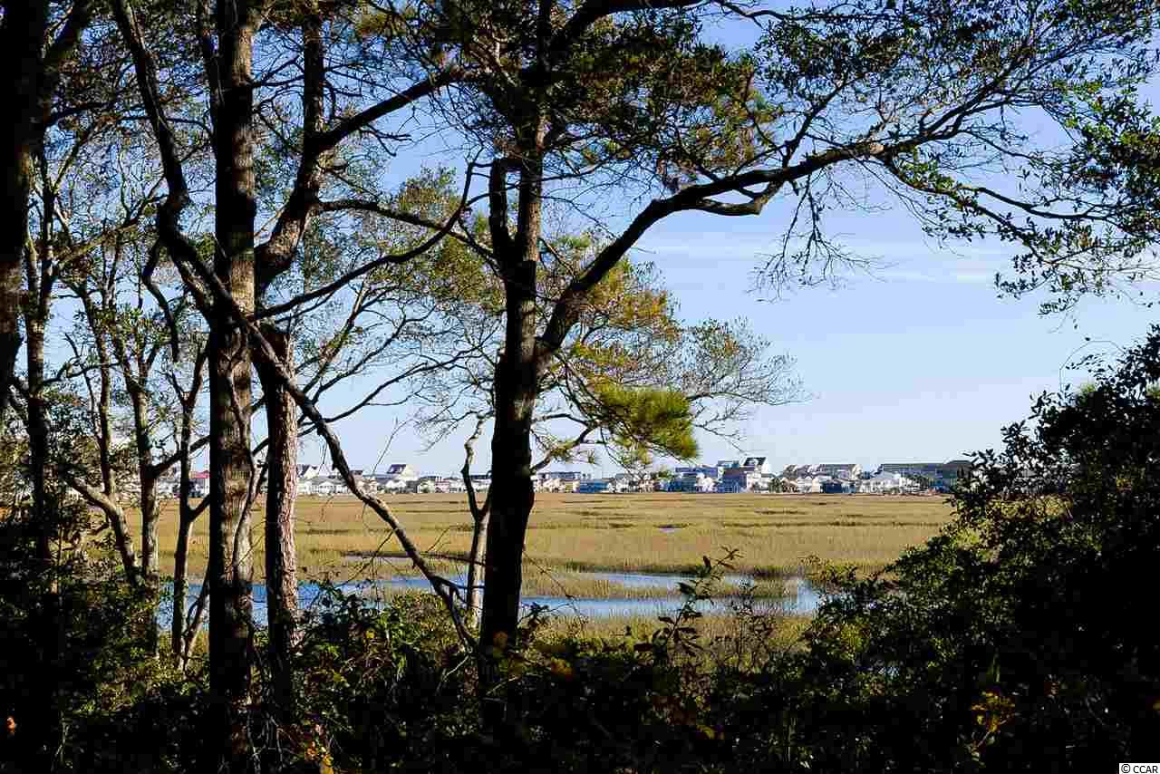 Spectacular large elevated lot with amazing views of the Cherry Grove marsh, inlet and Cherry Grove on the south end of the Bluffs section of Tidewater Golf Plantation surround by beautiful. Owner has letter from developer giving permission to build a dock. Also required is a permit from the Army Corps of Engineers. Tidewater is impeccably kept and has lots of amenities including an oceanfront cabana, many pools and hot tubs, tennis courts, pickle ball court, bocce ball court, fitness center and is fully gated with 24-hour security.