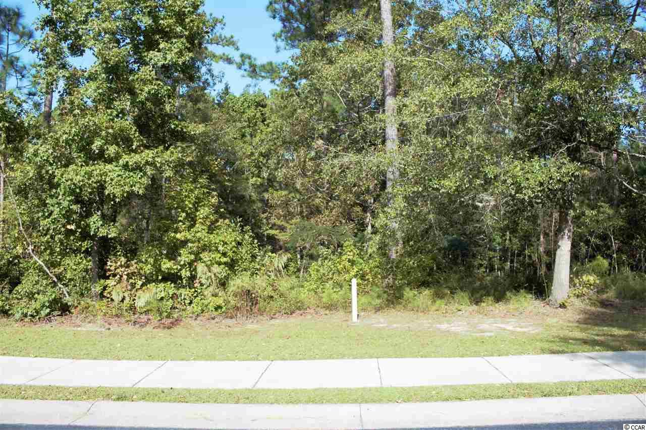 Beautiful and Spacious Lot on TPC Golf Course Which Runs Through Prince Creek's Prestigious Gated Highwood Community.  The Additional Green Space Behind The Lot Makes A Nice Buffer.  This Premiere Neighborhood In Murrells Inlet is only a Few Short Miles from Some of the Most Beautiful White Sand Beaches On The East Coast And Is A Short Distance From The Marshwalk, Which Is The Seafood Capital of SC.  Also Nearby Are Brookgreen Gardens, Huntington Beach State Park & All The Attractions of Myrtle Beach. Highwood  Offers Its Residents An Outdoor Pool, Clubhouse, Lighted Tennis Courts and Walking Paths.  Each Home Must Be Unique And Have A Minimum of 2500 Heated Sq. Ft.  Ask Listing Agent For Info Regarding Plans Designed To Fit This Lot And See MLS #1821400.