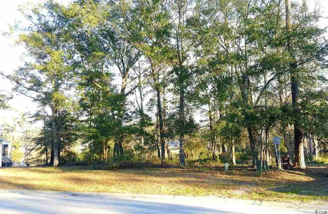 Prime Waterfront Building Lot in The Preserve at Green Lakes. Located East of 17 and just a short golf cart ride to the Beach, this lot is convenient to nearby restaurants, shopping outlets, golf courses & Hwy 22. Choose your own Builder with no timeframe to build. This could be the opportunity you've been waiting for to own your very own slice of the Grand Strand! Call & inquire today.