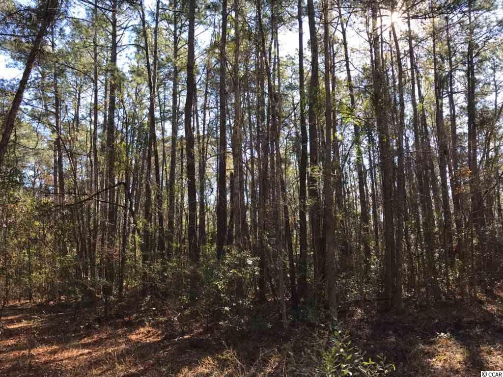 Come Build Your Dream Home on this Beautiful Wooded .36 Acres within Minutes to Myrtle Beach/Conway, Myrtle Beach International Airport, Shopping, and Public River Access and Beach Access!