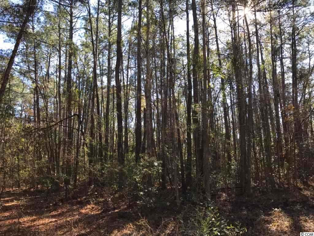 Come Build Your Dream Home on this Beautiful Wooded .50 Acres within Minutes to Myrtle Beach/Conway, Myrtle Beach International Airport, Shopping, and Public River Access and Beach Access!