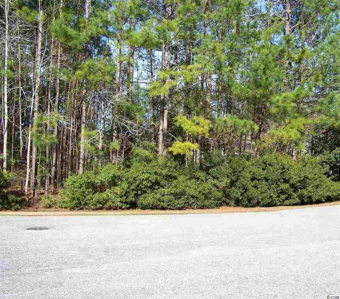 Custom build your dream home on this beautiful, 1.05 acre lot in desirable Hunters Ridge Plantation. This is one of the last estate lots remaining in Hunters Ridge with no time frame to build. This particular lot is located at the end of a cul-de-sac, very limited amount of traffic. Fantastic, award-winning Forestbrook Elementary and Middle Foresbrook Schools are within walking distance from this home site. The rear lot boundary is conservation land which ensures your privacy from any home builds behind it, and this lot is situated in a Zone X for non-flood area. Call listing agent for more information