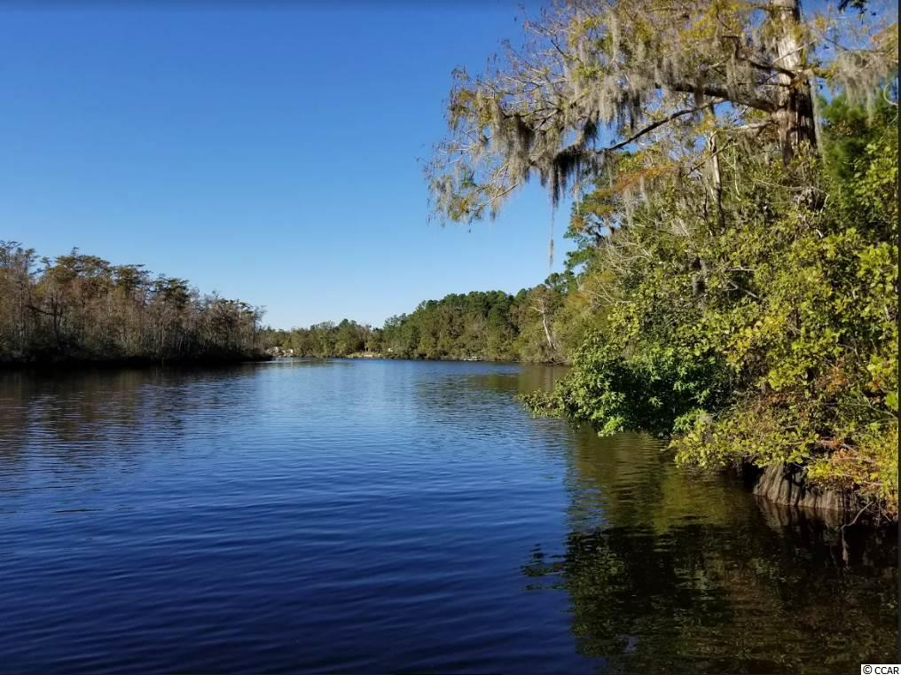 How about a turn-key lot on Black River? And yes, it has a dock, a double sea-wall, water in place, septic in place, and power. Cleared except for one to two years of growth. Build your dream cabin or park the RV here, it is ready for either. Easy access to Winyah Bay and the Inter coastal Waterway. You can't beat the views from here, sitting on a high bluff. Ride by and check out this Black River getaway, before it gets away.