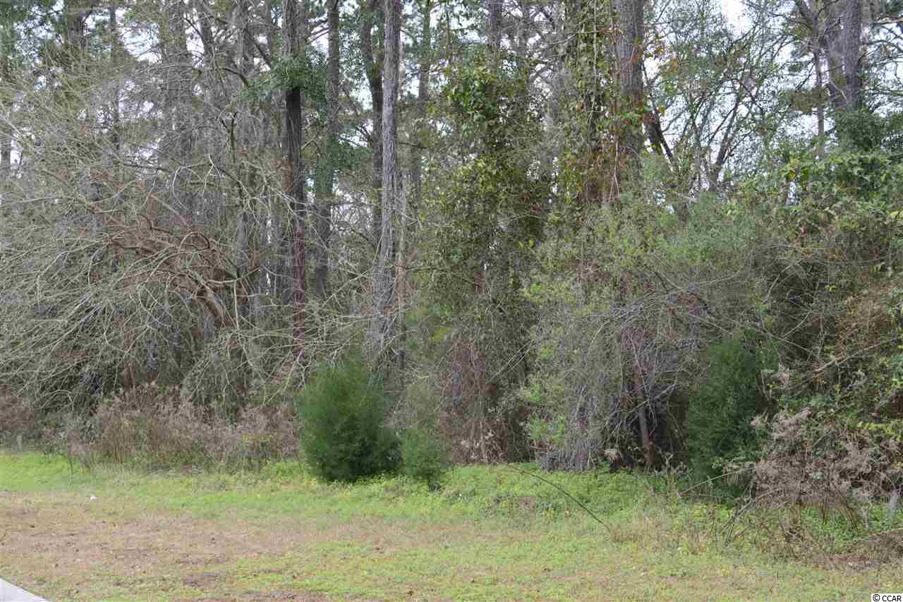 A beautiful lot in The Oaks at Winyah Bay. Located near Historic Downtown Georgetown. Community pool, hot tub and club house. There is a Community day dock on Winyah Bay. Huge Oak trees throughout.
