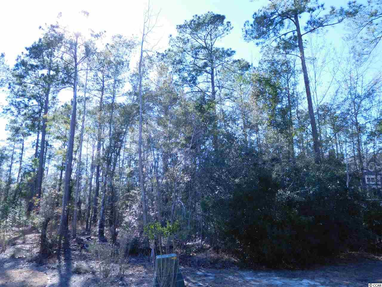 Half acre wooded homesite in a premier neighborhood which features access to the Waccamaw River and ICW. Access to the community boat ramp and amenity center is half a block away. This homesite backs up to a protected wooded wetland. This is a great place to build your custom dream home! Measurements are approximate and not guaranteed. Buyer is responsible for verification.