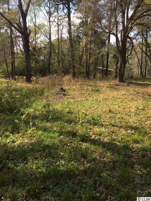 This .28 acre lot is perfect to build a house on in the city.  Just minutes away from Hwy 378, 501 and 701 as well as downtown Conway.  The beach is less than an hour away.