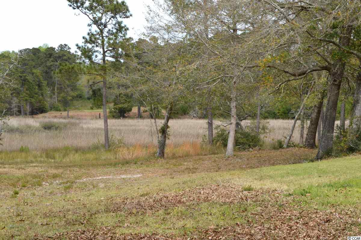 This lot is the perfect opportunity to build your dream home in Big Landing Plantation!  Quiet, gated community with nice amenities including pier and day dock.  Gorgeous marsh views!  Beautiful location!!