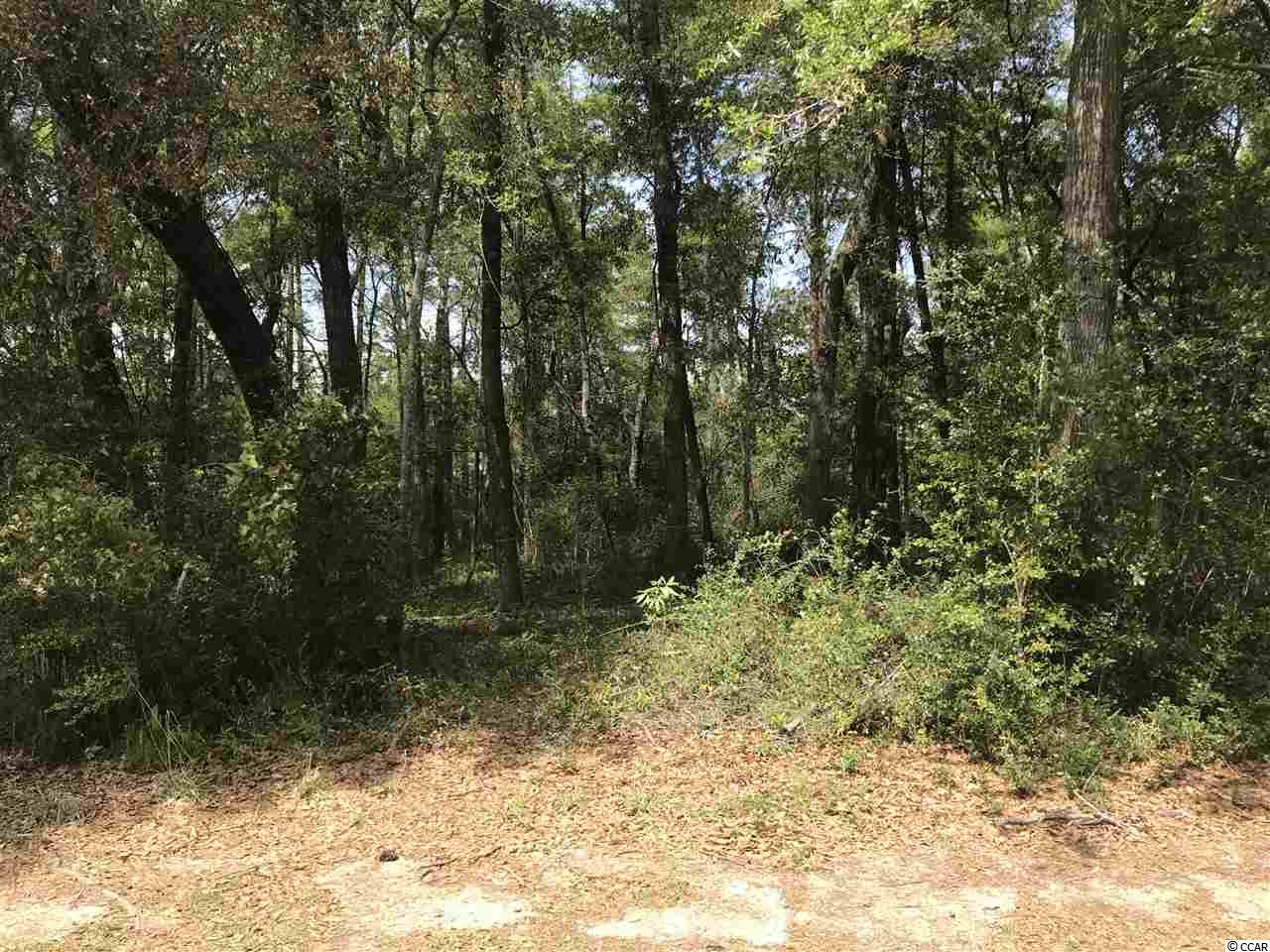 Build your DREAM HOME on this gorgeous lot at Preservation Point in The Reserve at Litchfield. This single-street neighborhood call PRESERVATION POINT provides a unique level of quiet and privacy completely surrounded by a natural wetland preserve. This lot is located in a gated community with tons of accessible amenities including a marina with  dry storage, a clubhouse and pool, Private Golf Club, and private beach. Don't miss out on this