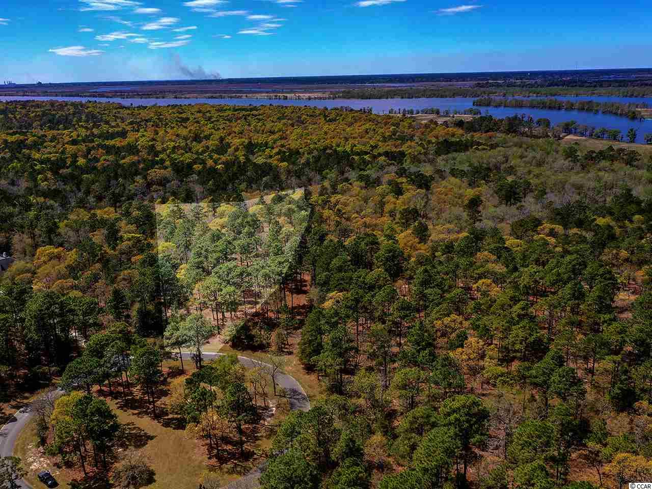 Over 8.50  acres in the esteemed Prince George Community. With the purchase of a homesite on the Riverside of Prince George, you also acquire a DEEDED BOAT SLIP at the private marina just steps from your property! Just south of Pawleys Island the Prince George community is a historically significant tract of land offering 150 unique homesites that stretch from the Atlantic Ocean to the Waccamaw River (Intracoastal Waterway). The property owners of Prince George are dedicated to preserving the natural beauty and serenity of this neighborhood. The riverside amenities include a clubhouse with sitting area, fireplace, kitchenette, and marina with your own boat slip. The oceanside amenities include a clubhouse featuring a swimming pool, hot tub, tennis courts, basketball courts, playground and private beach access.