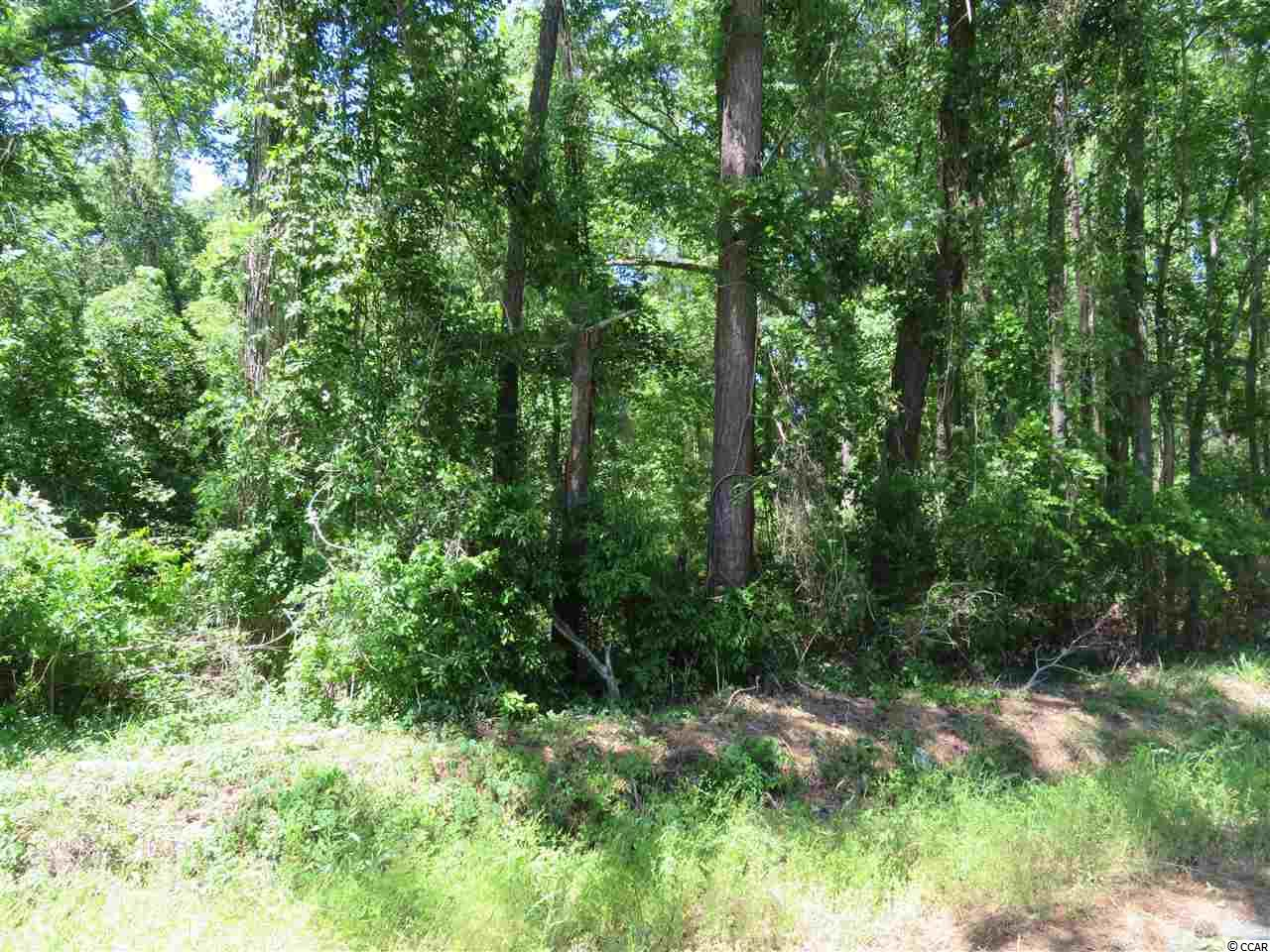 If you have been looking for land you've found it!  This 0.92 acre lot is ready for you to buy and build.  Approximately 15 minutes away from Historic downtown Conway, SC and less than 5 minutes away from Bucksport Marina. This property is prime and ready to build your dream home!