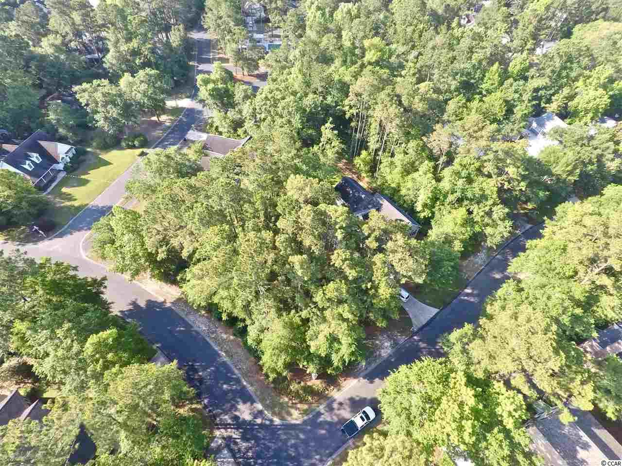 Perfect for building your dream home! Beautifully wooded lot, Ricefield plantation offers a community pool, owners club house, walking trails and a community boat ramp to the Waccamaw River! close to schools, shopping, dining and more!