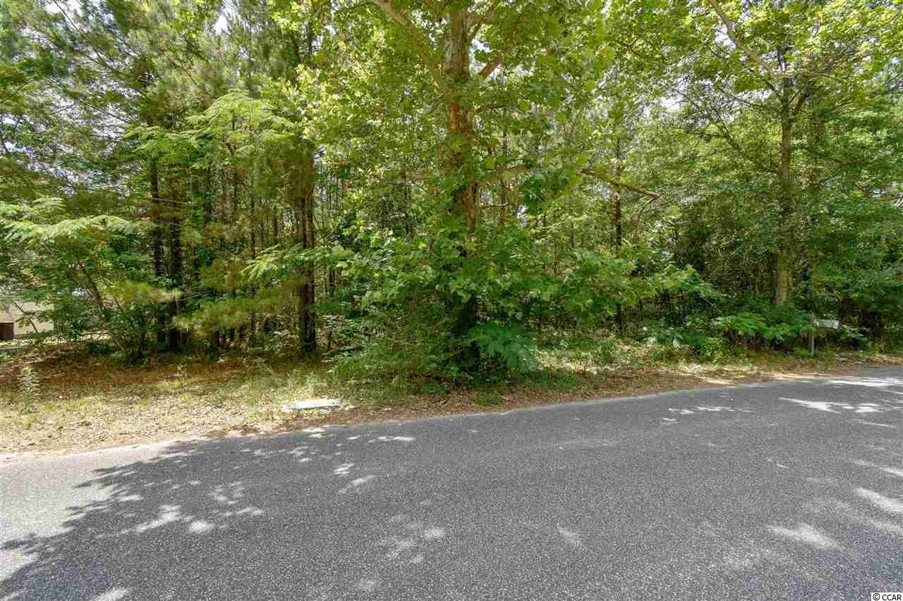 Located across from the Jamestown Baptist Church, this lot makes a perfect place to build a home for your family. Conveniently located to Historic Downtown Conway and only a short drive to Myrtle Beach and all the Grand Strand has to offer - shopping, dining & entertainment, golf courses, the airport, area attractions, the beautiful Atlantic Ocean and so much more. Stop by and take a look!