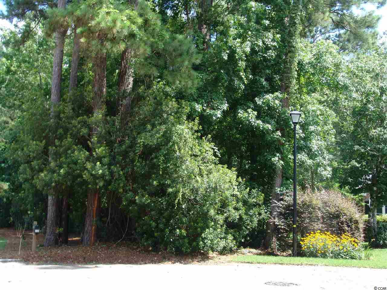 Nice wooded lot on Pintail Court.  Private, nice neighborhood!!!