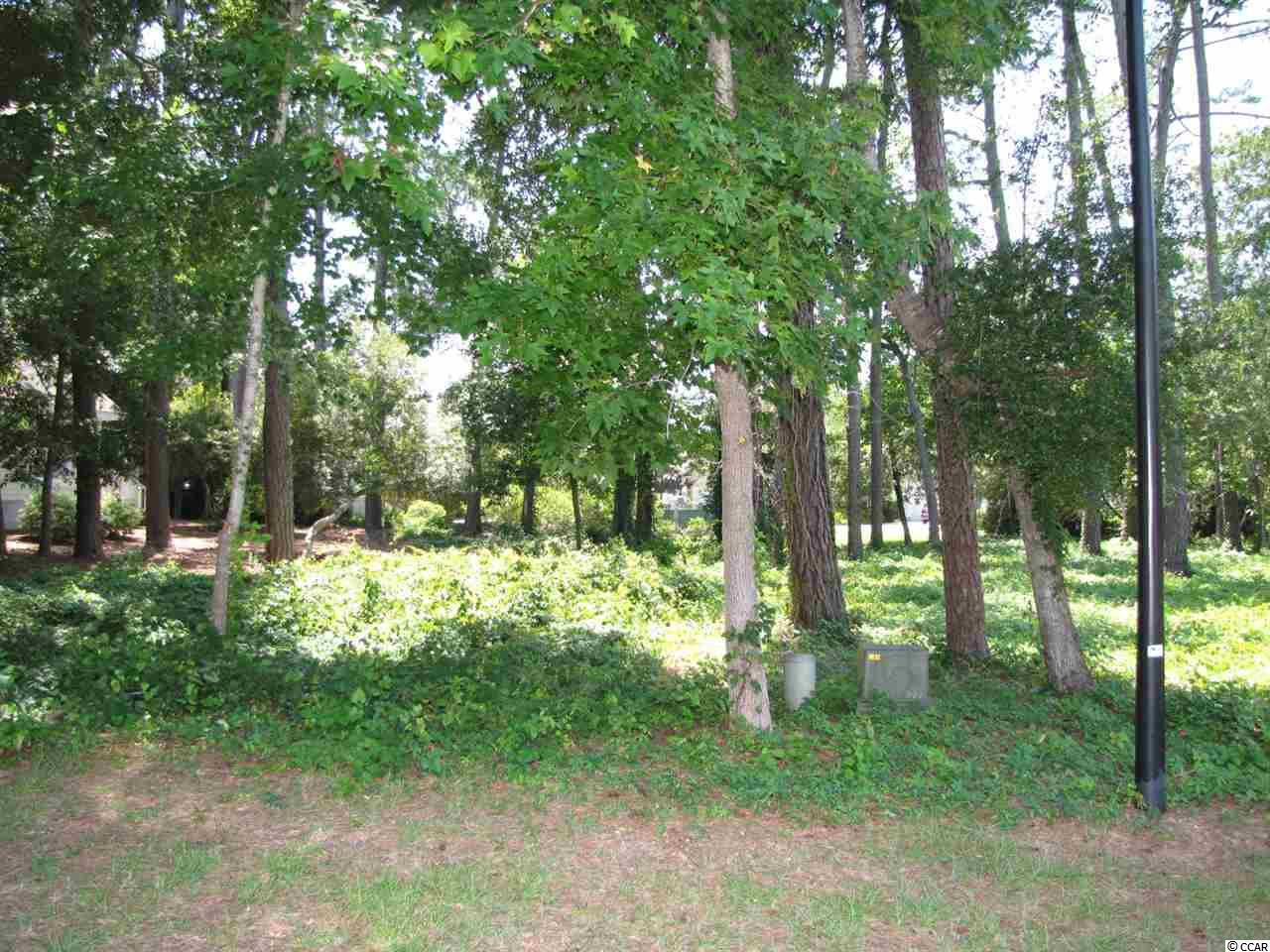 Looking for a lot to build that dream home in a great community, check out Tidewater Plantation!!  This lot is located in the Bluffs section of Tidewater Plantation, there is no time frame to build and bring your builder..  The Bluffs section of Tidewater is a gated section with it's own pool ( only for the Bluffs section residents).  The community is located between the Intracoastal Waterway and the Cherry Grove Inlet to the Atlantic Ocean.  The Bluffs section has it's own pool but the residents are able to use the other two pools hot tubs, in the other Tidewater section.  Tidewater Plantation amenities include putting greens, driving range, tennis courts.  The residents also have an Oceanfront beach Cabana located on North Ocean Blvd.   Great lot to build that dream home and close to the Blue Atlantic Ocean!!!!