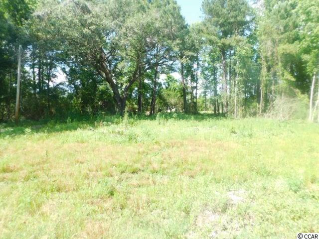Rare Opportunity to Find  approximately .50 Acre of CLEARED Land with a beautiful Live Oak Tree. NO HOA in the Myrtle Beach area which allows you to add a stick built home or a manufactured home. Never Flooded, this land is High and Dry!!! Ready to build your dream home on a large lot with privacy as the backyard is wooded with a pond view and the right side is wooded. With no HOA restrictions, you can park all of your work vehicles, trailers, and machinery without the hassle of dealing with an HOA.  Public water and sewer are accessible at this property as well as electricity, cable and internet services. Survey is in MLS however the lot size should be verified by the buyer. Conveniently located just off Hwy 707 between Socastee and Murrells Inlet. It's on Freewoods Road beside Island Green Subdivision. To locate the property turn left onto the dirt road at the curve on Freewoods Rd, also known as Seagull Rd.  Drive straight and pass the Seagull Rd Subdivision sign and where the road curves turn right on the dirt road. Pass the home at 10200 Freewoods Rd and it's the CLEARED vacant lot is directly beside it. If fishing and boating are your favorite past time, the Intracoastal Waterway is only 5 minutes drive, the Waccamaw River 10 miles away and Murrells Inlet, where salt water fishermen enjoy fishing, is approximately 15 minutes drive.