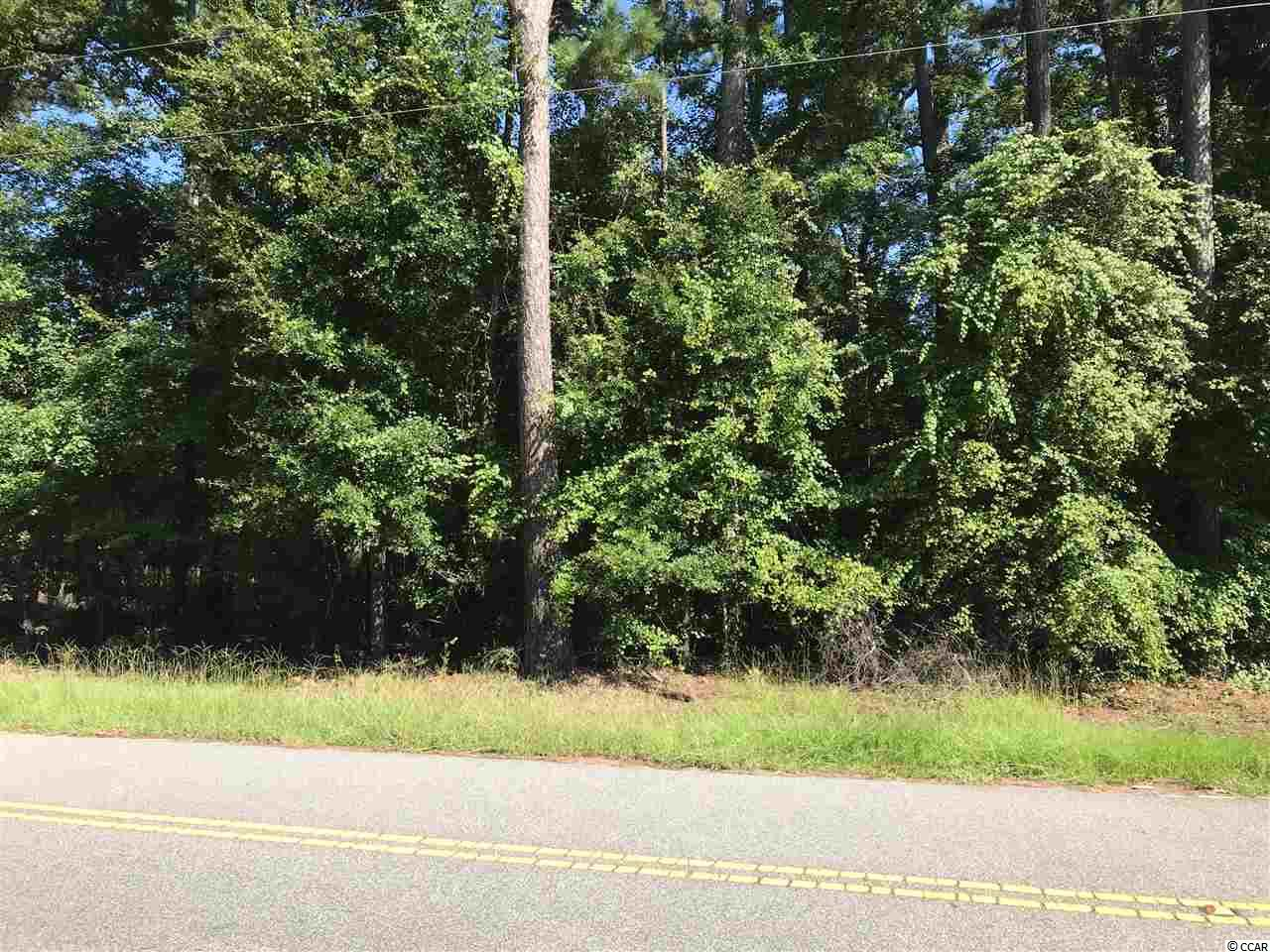 WOODED RESIDENTIAL BUILDING LOT- PUBLIC WATER AND SEWER AVAILABLE-NO HOA- EASY ACCESS TO WACCMAW RIVER