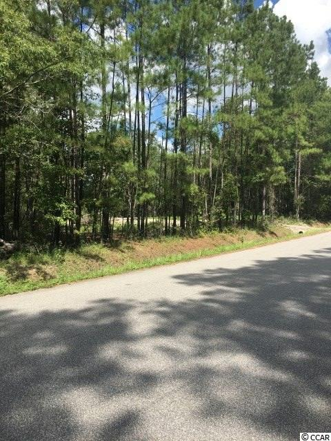 Beautifully partially cleared lot with a driveway.  Water and sewer have been run to the property.  Property is zoned residential and you can put a stick built home or a manufactured home on the home sight.