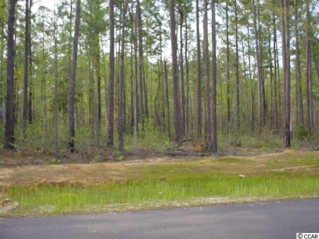 Just under1/2 acre, this lot backs up to a private plantation. Perfect location for your new home. Wedgefield offers the opportunity for a golf membership, as well as access to  tennis courts, pool and a boat landing on the beautiful Black River.