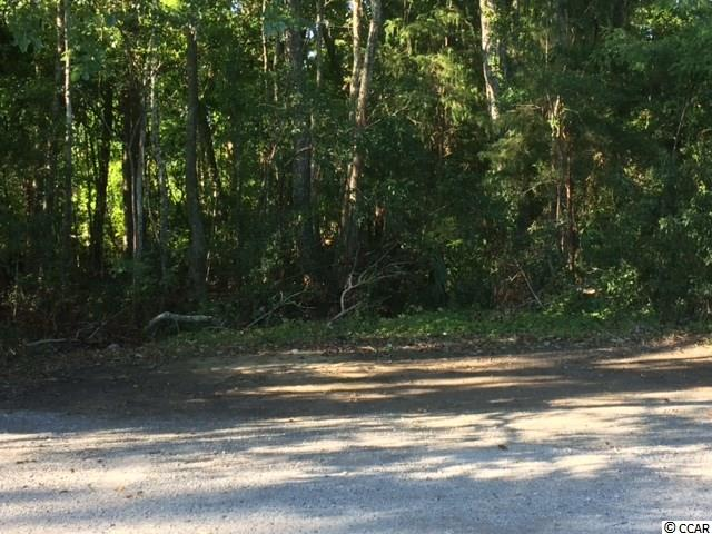 Vacant Commercial Lot next to the Island Shops and behind the Farmers Market on Ocean Highway in Pawleys Island.  Great space for parking for adjacent retail or restaurants, or 0.46 acres of buildable space for neighborhood retail or restaurant.
