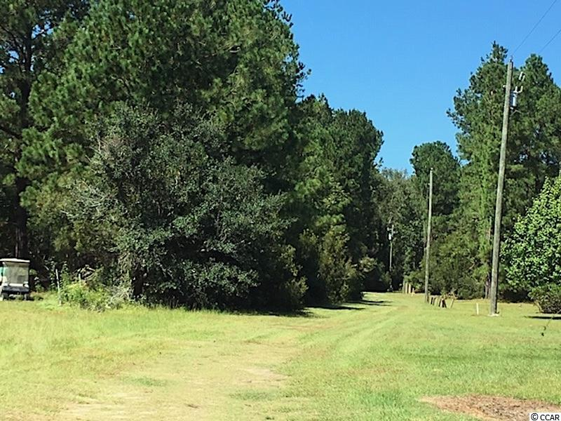 DEER, TURKEY, BASS PONDS, TIMBER!!! Hunt much? Like to explore the woods? Then You Must SEE This Land because it is Beautiful! This property has been solely used for hunting thus far. Mature loblolly pines and mixed hardwoods encompass this Special piece of Horry County, SC. Zoned FA, so the possibilities of Uses range (Timber, Farm, Manufactured Homes, Modular Homes, Log Cabins, Hunting Shacks...) Or a New Home and New Family land. The ponds on the southern end of the property are smaller and range in depth, and need a little grooming (Bass, possibly bream).  There is a higher area on the north end where historically the turkeys come through. The property has been maintained in the past, and is some need of thinning. The lower lying hardwood run through the property does allow for a little wetland area, though it rarely has flooding issues.