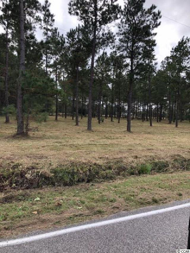This lot is perfect for any new or growing business.  Just under 3 acres of land near the high traffic intersection of Long Ave Ext and Hwy 701.  There was a plan implemented and approved in 2016 that will enlarge and widen Hwy 701 through this area.  Long Ave Extension is a desirable area in Conway with many homes nearby.  Opportunity awaits!