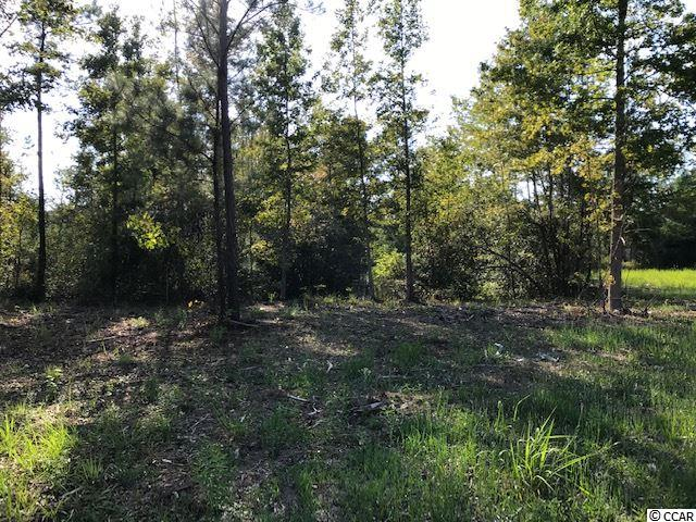 Beautiful lot with pond ready for your stick built or manufactured home.  Lot has been cleared for your homesite. Water available at road. A total of 4 lots available ranging in size from .69-.92 acres each.  Will sell separately or together.  This listing is for lot 3-B. Signs are placed where each lot begins.