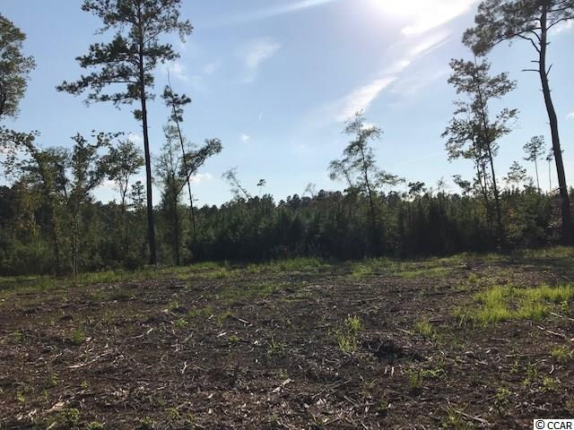 Beautiful lot for your stick built or manufactured home. Lot has been cleared for your homesite.  Water available at road.  A total of 4 lots available ranging n size from .69-.92 acres each.  Will sell separately or together. This listing is for Lot 3-C.  Signs are placed where each lot begins.