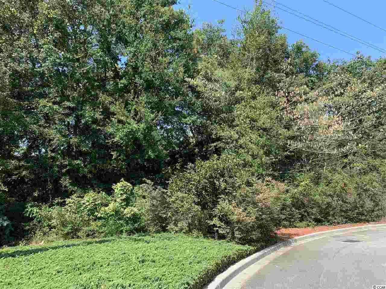 This property is ina very convenient location in the heart of Pawleys Island/Litchfield community. There are 3 other properties available in the same area. Within minutes of Litchfield Beach and Huntington State Park