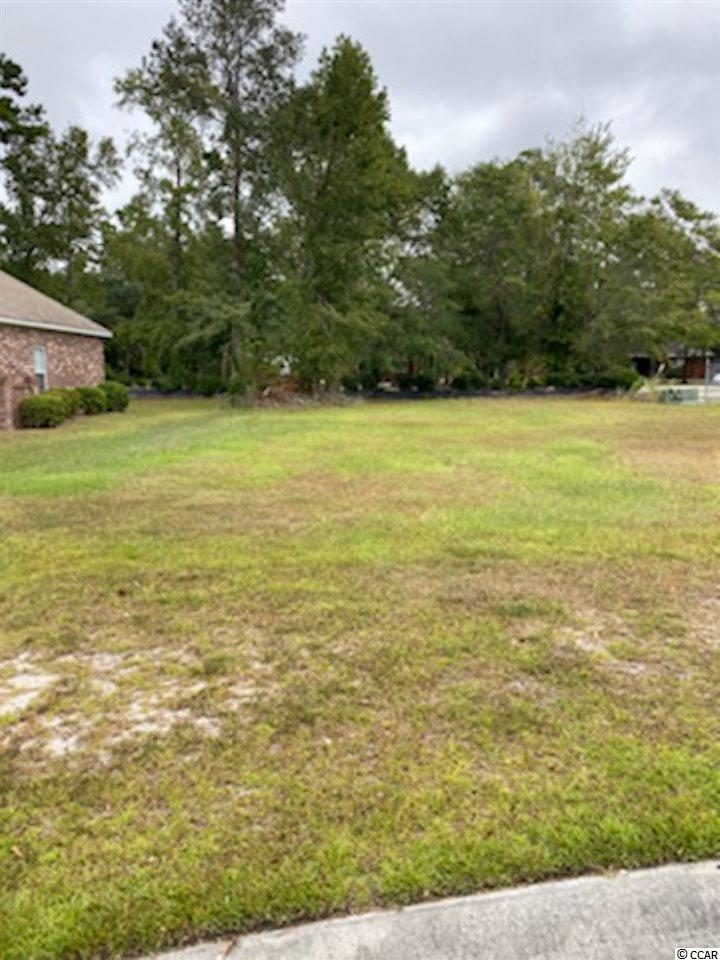 GREAT LOT TO BUILD YOUR DREAM HOME AND YOU CAN PICK YOUR OWN BUILDER AND BUILD WHENEVER YOU WANT.  SELLER IS A SOUTH CAROLINA REAL ESTATE AGENT. THE SELLER ALREADY HAS HOUSE PLANS AND ENGINEERING DONE THAT ARE AVAILABLE THAT WILL SAVE YOU TIME AND MONEY.