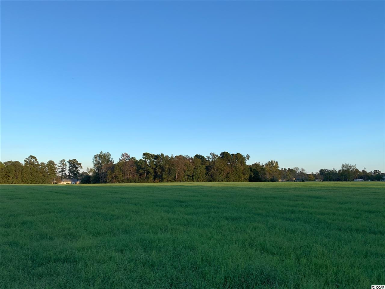 Beautiful 21.84 acres located just a few minutes from downtown Conway. Mostly cleared hay field , large pond located at the back of the property and wooded at road for privacy. This property would make a beautiful farm, residential development tract, or mobile home park. Endless potential, conveniently located close to highway 501.